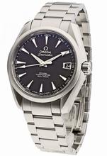 Omega Seamaster Aqua Terra 231.10.39.21.06.001 Mens Watch