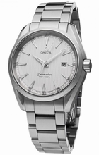 Omega Seamaster Aqua Terra 231.10.39.61.02.001 Mens Watch