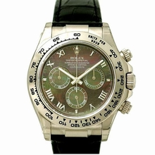 Rolex Daytona 116519 Automatic Watch Watch