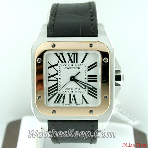 Cartier Santos 100 W20107X7 Midsize Watch
