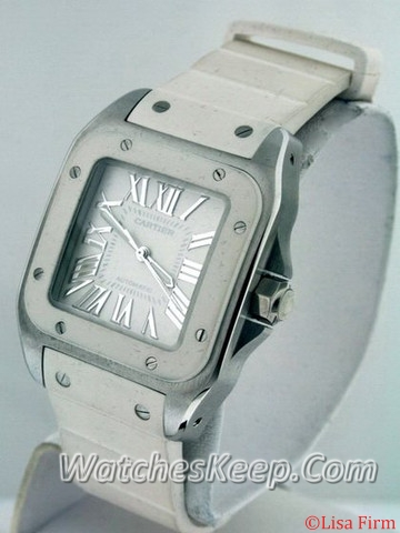 Cartier Santos 100 W20129U2 Ladies Watch