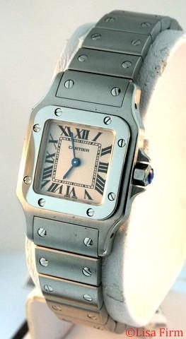 Cartier Santos W20056D6 Ladies Watch