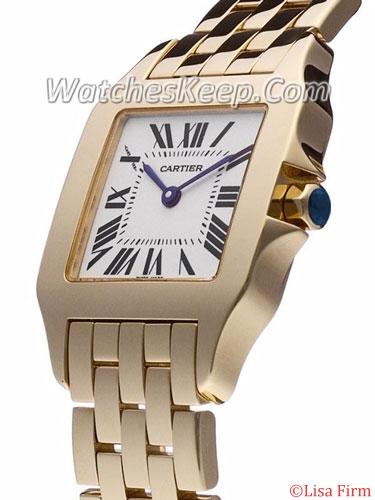 Cartier Santos W25062X9 Mens Watch