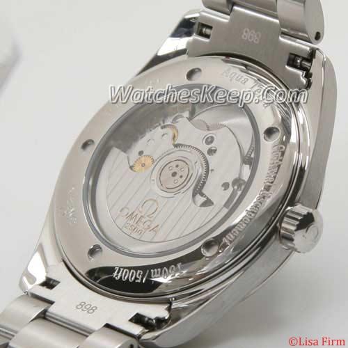 Omega Seamaster Aqua Terra 2503.80.00 Mens Watch
