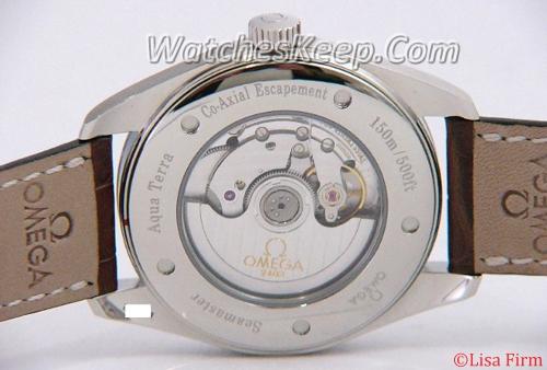 Omega Seamaster Aqua Terra 2802.52.37 Mens Watch